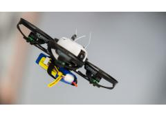 Blade Torrent 110 FPV BNF Basic